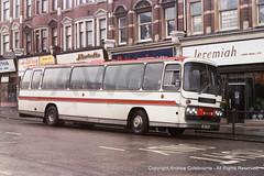 SP03933-251278 (andrewcolebourne) Tags: goldersgreen spanishspeakingservices jnk551n sss northendroad bedford yrt plaxton panorama elite coach london