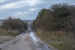 The Old Salisbury Road - How Straight it is (stevedewey2000) Tags: wiltshire salisburyplain road oldroad byway landscape turnpikeroad salisbury devizes projectorlens diylens homemadelens manualfocus