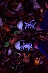 ({Sam~I~am}) Tags: paint converse fall shoes lowlight autumn feet leaves woods forest groud nikon