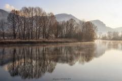 Adda river (fabrizio daminelli ) Tags: italy fabriziodaminelli canon lombardy lombardia wildlife natura nature landscape paesaggio sole sun fog nebbia river fiume adda