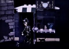 Robbing the Mall (pianocats16) Tags: catwoman doll tim burton batman returns living dead dolls cats black kitty lego