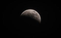 Lunar Eclipse (Tony Webster) Tags: minnesota superbloodwolfmoon tonywebster eclipse lunareclipse moon superblood supermoon wolfmoon eastlake unitedstatesofamerica us