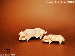 Lunar New Year 2019. (Magic Fingaz) Tags: barthdunkan origami cochon pig origamipig porc maiale 猪 svinja cerdo सूअर babi 豚 beraz varken porco свинья свиња หมู domuz paperfoldinghappynewyear2019craftmfpppliagedepapier 2019yearofthepig lunarnewyear2019