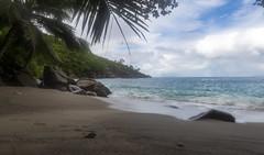 Anse Major / Пляж Анс Мажор (dmilokt) Tags: природа nature пейзаж landscape море sea пляж beach песок sand пальма palm небо sky облако cloud dmilokt nikon d850