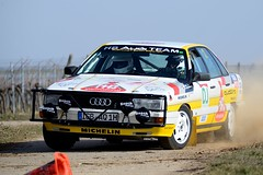 Audi_200_3938_1600_2 (psnikon) Tags: audi audi200 audi200quattro20v race racing racingphotography rally racecar rennwagen rallye rallyesüdlicheweinstrasse nikon nikonphotography nikond800e sigma sport sigma150600oss südlicheweinstrasse suedlicheweinstrasse auto car hb worldcars classic motorsport automotive classiccars automobiles vintage course historic trophy driver speed legend gruppea safari