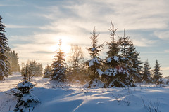 2 (Marcel Svět) Tags: canon eos 760d efs 18 55 is stm snow winter mountains krusne hory forrest sunny day