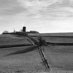 The Way to the Church (Velby) Tags: blackandwhite blackwhite church landscapes tree field velbert windrath bw