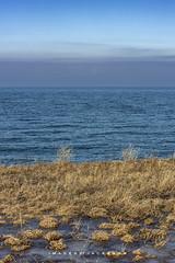 Port Weller Ontario 2019 (John Hoadley) Tags: grass lakeontarioi portweller ontario 2019 february canon eosr 70200 f11 iso100 clouds horizon