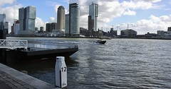 (Uno100) Tags: rotterdam hotel new york nh port security maas water ship taxi 2019 building