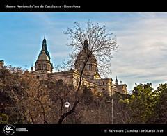 1080_D8C_9454_bis_Barcelona (Vater_fotografo) Tags: barcelona barcellona museudartcatalunya ciambra clubitnikon cielo controluce ciambrasalvatore vaterfotografo salvatoreciambra spagna espana españa nwn nuvole nuvola nube nubi