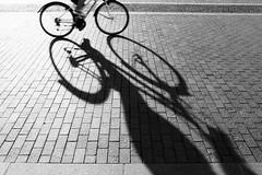 (halagabor) Tags: bnw blackandwhite monochrome shadow bike bicycle ride budapest hungary film filmisnotdead filmcamera filmisalive filmphotography ishotfilm ishootfilm fortepan forte fortepan400 city citylife street streetphoto streetphotography nikon nikkor fe2 nikonfe2 analog analogcamera