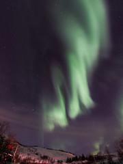 Tromsö 2019 (265 von 699) (pschtzel) Tags: nordlicht norwegen2019 tromso