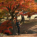 Picture taking in Nara among the fall foliage