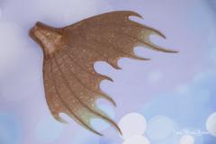 SD Fairyline Scarlette merdragon tail (AnnaZu) Tags: merdragon dragon scarlette tail mermaid magnetic polymer clay fairyline doll fairyland annazu annaku vesnushkahandmade fantasy parts commissions