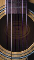 IMG_0094.CR2-2 (slashg) Tags: wopple guitar music sixstring cort yamaha macro restrang