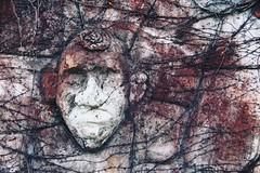 . (just.Luc) Tags: streetart urbanart face gezicht visage gesicht wall muur mur mauer leuven louvain löwen belgië belgien belgique belgium belgica vlaanderen flandres flanders vlaamsbrabant