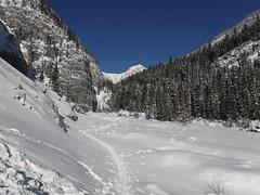 A trip to grotto canyon Alberta Canada (davebloggs007) Tags: grotto canyon canada alberta hike mountains snow winter 2019