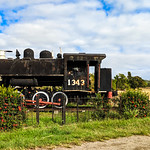 Steam loco at the entrance of Carmita Sugarmill thumbnail