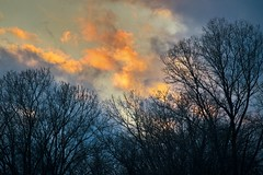 Sunset after the storm (kirsten.eide) Tags: wisconsin storm nikon colors atmosphere clouds trees sunset