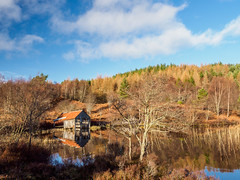 Loch a' Chlachain Boat House (Highlandscape) Tags: iainmacdiarmid landscape wooden reflections outdoor rural hill southlochness ecosse countryside highland clachan em1markii cloud highlandscapezenfoliocom olympus natural highlands water reedsmblue redroof beauty delapidated tinroof structure plantation loch trees spring colour scotland march highlandscape walls unitedkingdom roof sky boathouse weather 2019 dunlichity lochachlachain