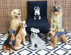 Leader of the pack (Levitation_inc.) Tags: miniature figures figurine dog dogs 16 scale playscale display diorama canine shepherd terrier retriever