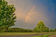 Rainbow (The Vintage Lens) Tags: summer storm rainbow florida mother nature trees cloudsbillow