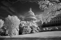 Capitol Building DC (IR) (Sean Hartwell Photography) Tags: infrared ir washington dc usa america capitol monochrome