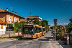 36004 [Start Cesena] (wylaczpantedlugie) Tags: bellaria start bredamenarinibus m321u