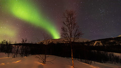 Come out to play Northern Lights (pboolkah) Tags: canon canon5d canon5dmkiv norway night astro stars sky