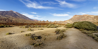 Tenerife IMG_8772