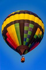 Yellow & Black (subrec) Tags: lakeland florida hot air balloons sunnfun sun n fun international flyin expo colorfulskies colorfulsky colorful color tampabay tampabayarea tampa orlando airshow pentaxk50 pentax pentaxart bluesky