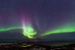 Aurora-Norway-1 (A. Gosewehr) Tags: norway sommeroy aurora northernlights night sky auroraborealis green purple circle arctic norwegen nordlicht grün lila arcticocean nacht himmel sterne stars
