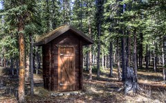 Spring Comes to the 'Little House' (Katy on the Tundra) Tags: outhouse toilet loo