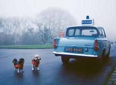 Goathland North Yorkshire (boloveselvis) Tags: kodak gold 200asa 35mm 36 exp single filmism 200 classic car film xmas christmas tree yorkshire