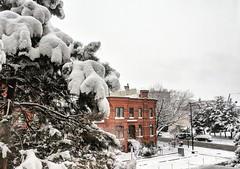 Snurlough! (ekelly80) Tags: dc washingtondc january2019 winter snurlough snow snowstorm shutdown trumpshutdown view 15thstreet street white cozy casakeis window corner