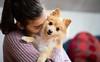 Puppy Love (alexanderferdinand) Tags: michellegalabova tiere dog hund sweet puppy girl cute sigmaart50mm14