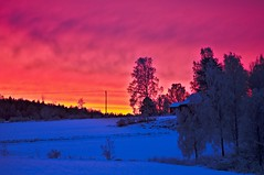 Winter sunrise (Stefano Rugolo) Tags: stefanorugolo petanx k5 pentaxk5 smcpentaxm100mmf28 kmount ricohimaging winter sunrise countryside landscape sky colors morning trees snow manualfocuslens manualfocus manual vintagelens barn house sverige hälsingland sweden 2019