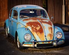 broken down Beetle (Two-Six-Nine) Tags: car beetle bug broken vehicle rust old blue