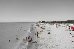 Beach Day (Streetfire2007) Tags: beach ocean sun fl venice a7ii 24240mm