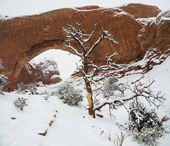 North Window Snowstorm (xjblue) Tags: 2018 archesnationalpark newyearsweekend southernutah utah canyon canyonlands cold desert governmentshutdown sandstone snow trip winter naturalarch natural span