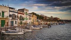 Vell port (ponzoñosa) Tags: port seaport viejo portocolom mallorca palma island isla mediterraneo sunset casas pescador fisher