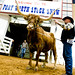 Stock show Longhorns 2009015.JPG