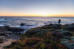 Carmel-By-The-Sea HW1, December 2018 #2 (satoshikom) Tags: canoneos6dmarkii canonef1635mmf28liiusm carmelbythesea hw1 californiacoast sunset