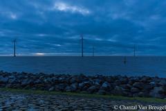 IJsselmeer (Chantal van Breugel) Tags: landschap winter zonsondergang blauwuurtje windmolens ijsselmeer espel noordoostpolder flevoland december 2018 canon5dmark111 canon1635