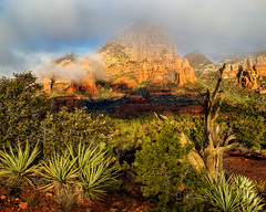 Head In The Clouds (Guy Schmickle) Tags: arizona capitolbutte coconinonationalforest sedona thundermountain fog