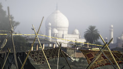 Fenced Taj Mahal (Renate Bomm) Tags: building fe70300mmf4556goss fencedfriday fended indien renatebomm sonyilce6000 tajmahal zaun outside monument worldheritage architecture moghularchitecture winter shahjahan mumtazmahal