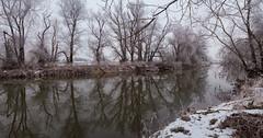 Winter an der Rott / Winter at the river Rott (ludwigrudolf232) Tags: winter flus rott bäume wasser