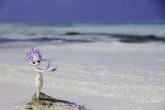 Coral Princess (AnnaZu) Tags: dollzone shanhu abjd bjd balljointed annazu annaku coral princess