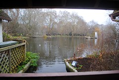 View from Duck Island Cottage (zawtowers) Tags: jubilee greenway section 9 westminsterbridgetobuckinghampalace westminster central london saturday 19th january cloudy dry cold amble walk stroll exploring st jamess park historic grade i listed duck island cottage lake ducks visible