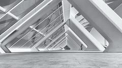 Angles (Andrew G Robertson) Tags: valencia architecture city arts science ciudad de las artes y ciencias museu les ciències príncipe felipe museum sicences reflections sunrise santiago calatrava felix candela spain espania sciences